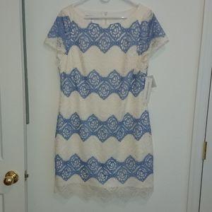 Maggie London Blue/Cream Lace Sheath Dress